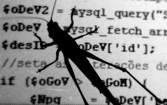 Code Bug (Photo by Guilherme Tavares, cc-by license, http://www.flickr.com/photos/guitavares/1703252007/)